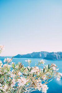 Witte Bloemen Blauwe Zee van Patrycja Polechonska
