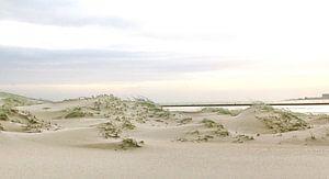 Duinen van Texel van