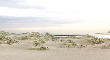 Duinen van Texel van Henk Langerak