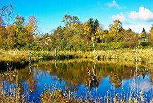 L'étang de la petite tourbière