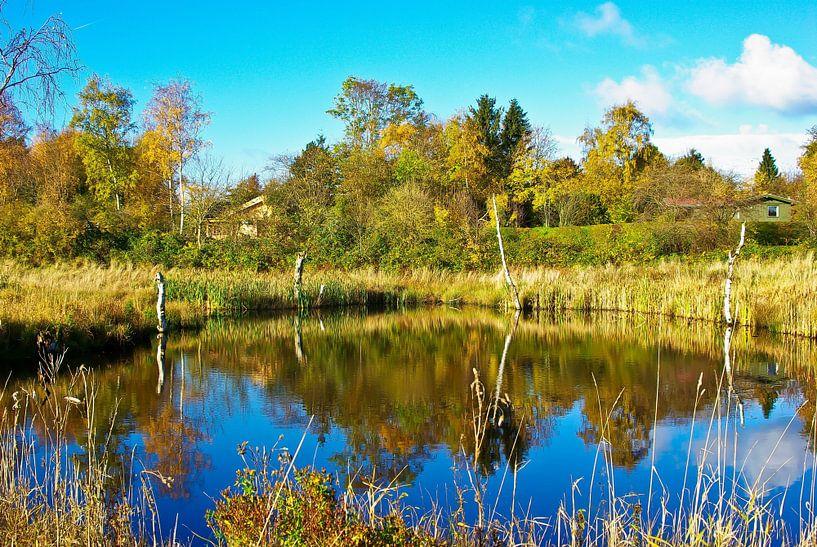 L'étang de la petite tourbière sur Norbert Sülzner