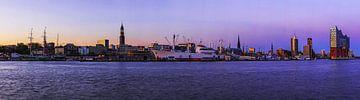 Hamburg Skyline Panorama im Sonnenuntergang von Frank Herrmann