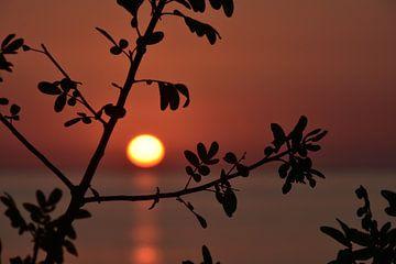 Sonnenuntergang in Ifaty von Esther van der Linden