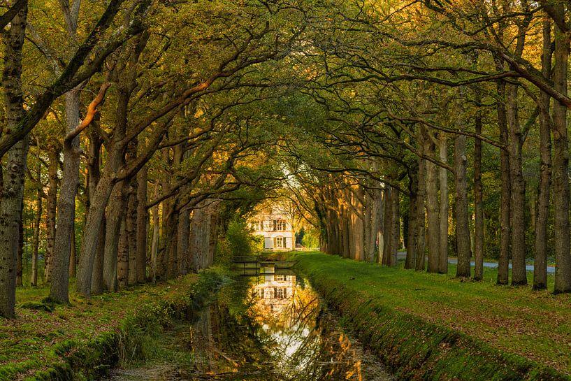 Landhuis in Veenhuizen van Anneke Hooijer