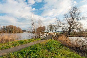 Houten brug over water van Ruud Morijn