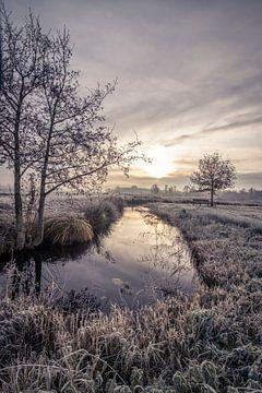 Winters landschap van Connie de Graaf