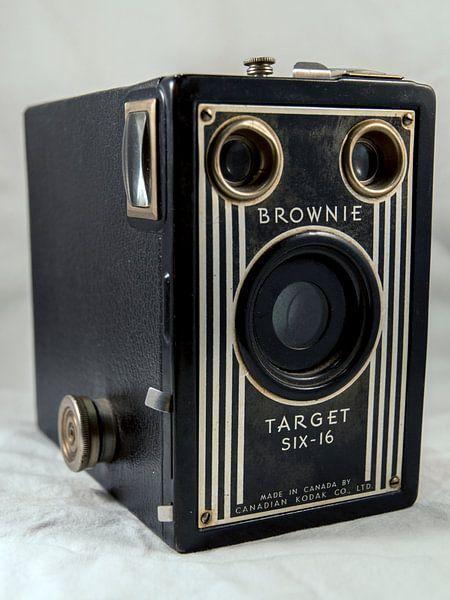 Brownie Target six-16 van Wilfred Roelofs