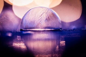 Bevroren bel van Robert van Grinsven