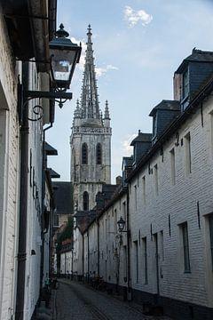 Sint-Geertrui en Klein Begijnhof, Leuven van Manuel Declerck