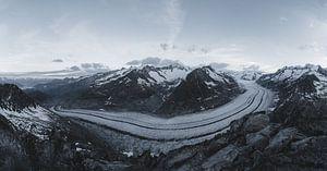 Panorama van het landschap aan de Aletsch gletsjer in Zwitserland tussen de bergen van Felix Van Lantschoot