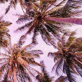 PASTEL PALM TREES no5b von Pia Schneider