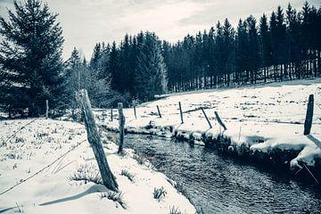 Winterlandschap van Peter Deschepper