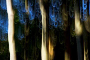 blue hair II van Bernd Hoyen
