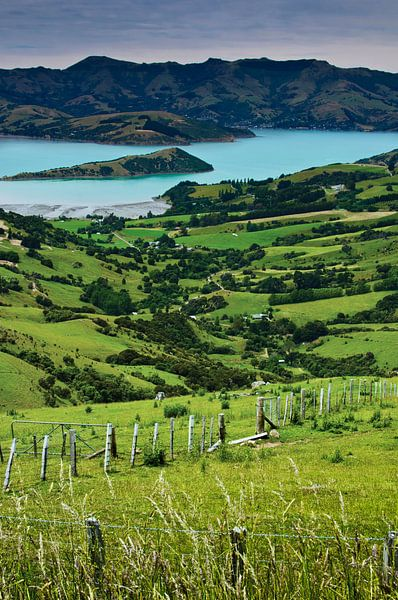 Banks Peninsula - Nieuw Zeeland van Ricardo Bouman | Fotografie