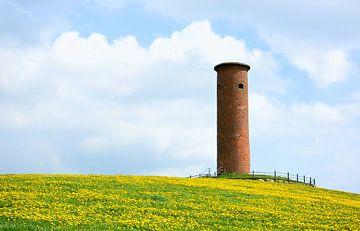 Gömnitz-toren van Gisela Scheffbuch