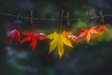 Herfstbladeren aan waslijn. van Faeline Creations