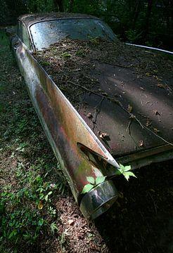 Cadillac fading away van Jos Hug