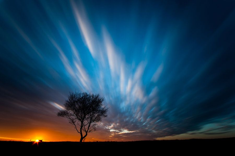 silhouet van Hans van den Beukel