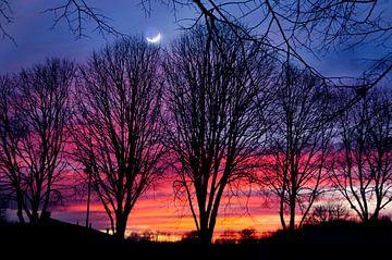 Zie de maan.... van Corinne Welp