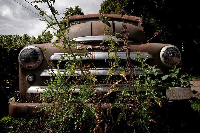 Ford Fargo von Vivian Teuns