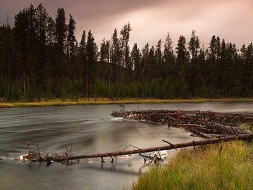Madison River, Yellowstone NP (USA) van Sjaak den Breeje
