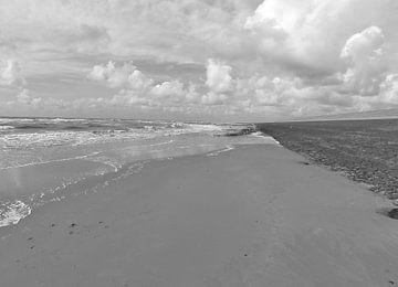 monochrome zee landschappen van erik boer