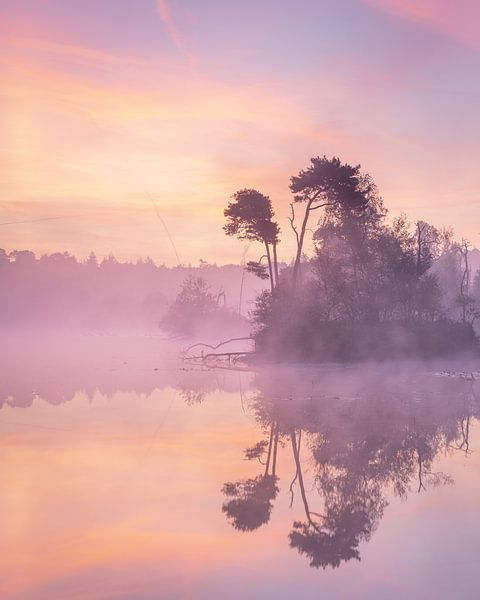 De perfect ochtend van Peter Nolten