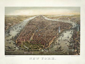 New York im Vogelfeuer - 1873