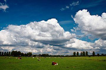Ruhige holländische Landschaft von Richard de Nooij