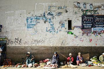 des agricultrices locales vendent des fruits et des fleurs au Brésil sur Tjeerd Kruse