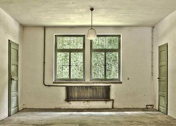 De groene kamer van Jerome Coppo