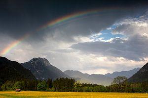 Regenbogen in Graswang von