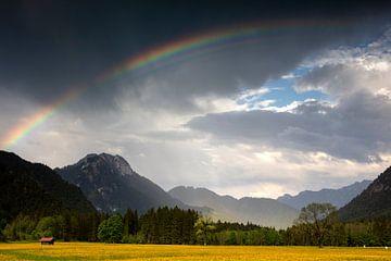 Regenbogen in Graswang von Andreas Müller