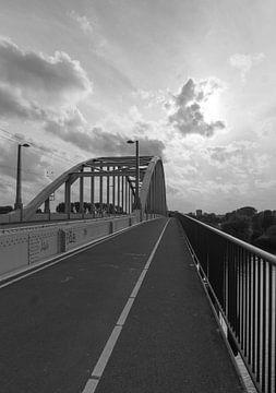 A bridge too far van Babette van Gameren