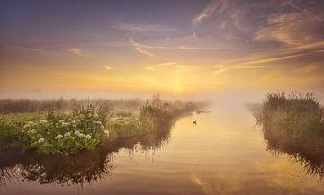 Mistige ochtend op de Zaanse Schans van John Leeninga