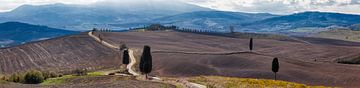 Panorama van het Gladiator landschap in Toscane von Roy Poots