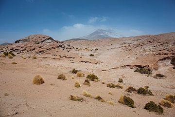 Felsformationen, Naturschutzgebiet Salar de Tara, San Pedro de Atacama, Chile von Tjeerd Kruse