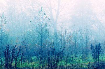 The Beauty Of Silence 3 von Nicole Schyns