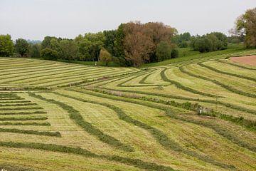 Kunst van de boer sur