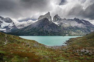 Torres del Paine van Ronne Vinkx
