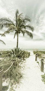 Weg naar het strand   Vintage Panorama van Melanie Viola