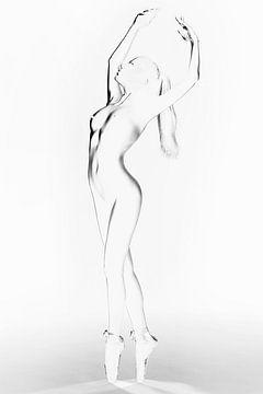 Ballet-2 van Bodo Gebhardt