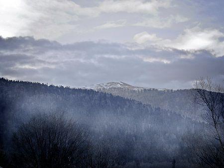 Brouillard et brume sur Ruxandra Proksch