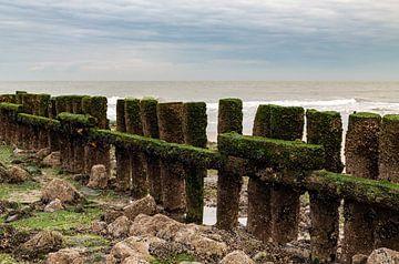 Wellenbrecher Zeeland von MSP Canvas