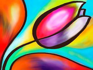 Kleurrijke tulp van