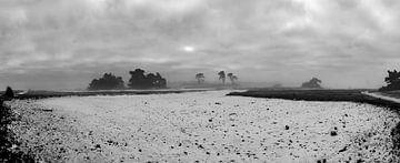 Panorama Winterlandschaft von Marcel Pietersen
