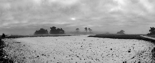 Panorama Winterlandschap