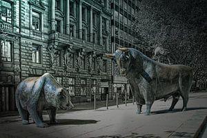 baer an bull