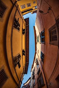 De straatjes van Lucca van
