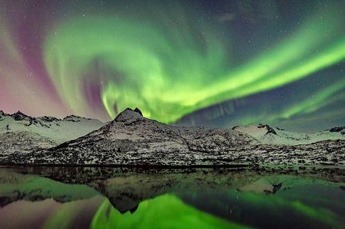 Noorderlicht, poollicht of Aurora Borealis in de nachtelijke hemel boven de Lofoten in Noorwergen